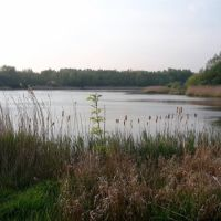Amberswood nature reserve