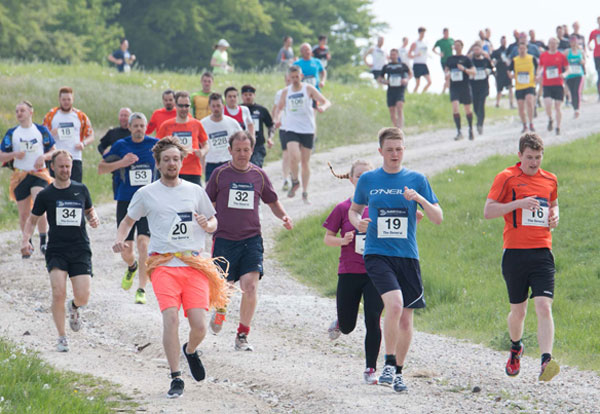 runners on the trails at a Tough Race
