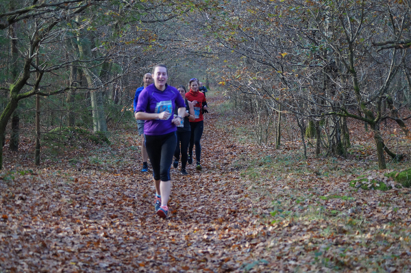 Runners At The Breckland Forest 10K