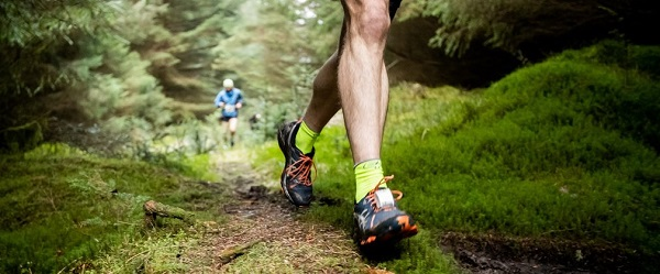 /images/news/2019/1/forestry-commission-trail-running.jpg
