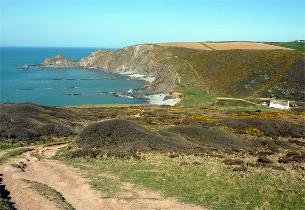a view on the South West Coastal Path